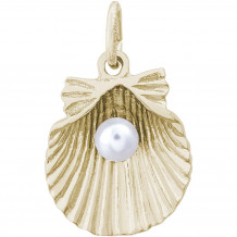 14k Gold Shell With Pearl Charm